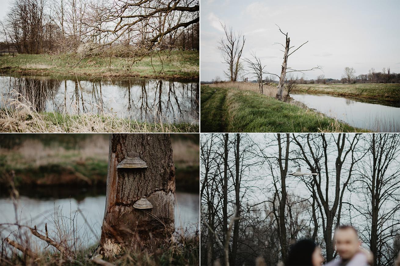 #rzeka #przyroda #plener